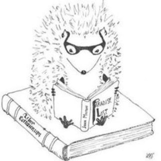 cropped-reading-hedgie.jpg